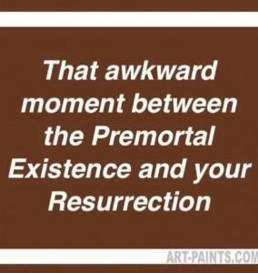 Mormon LDS Meme Funny (30)