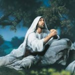 Our Own Personal Gethsemane