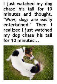 Hilarious memes funny posts lol humor (20)