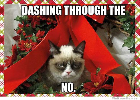 dashing-through-the-no-grumpy-cat-meme1.
