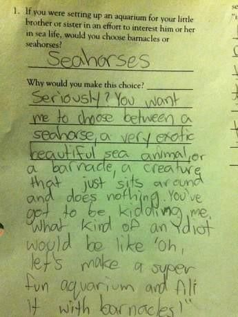 funny things to write on your homework