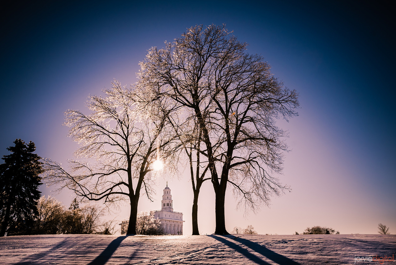 39 LDS Temples beautiful - Scott Jarvie (11)