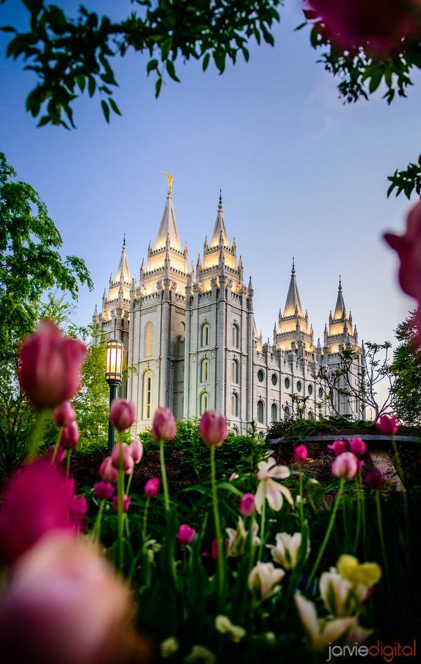 39 LDS Temples beautiful - Scott Jarvie (15)