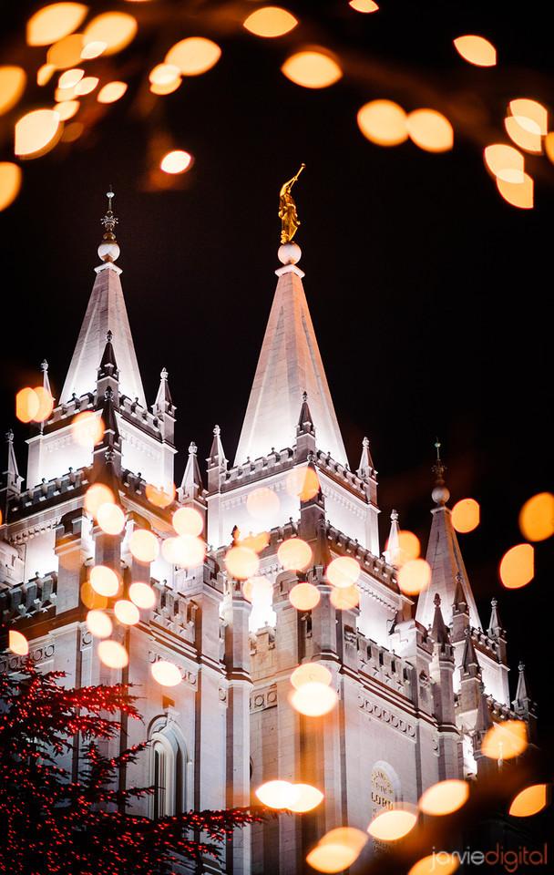 39 LDS Temples beautiful - Scott Jarvie (18)