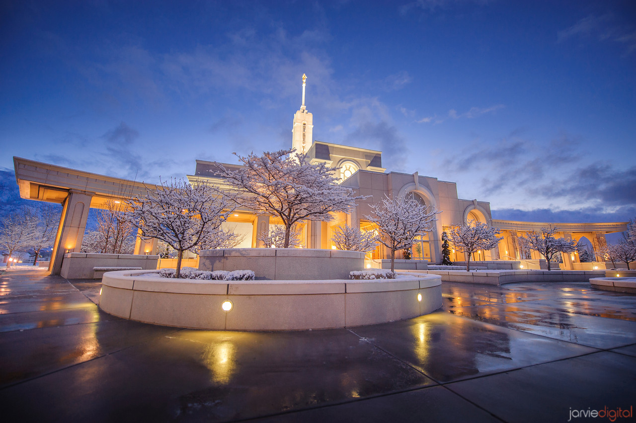 39 LDS Temples beautiful - Scott Jarvie (24)