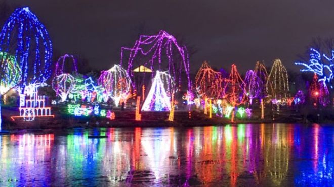 Awesome Christmas lights (12)