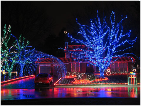 Awesome Christmas lights (15)