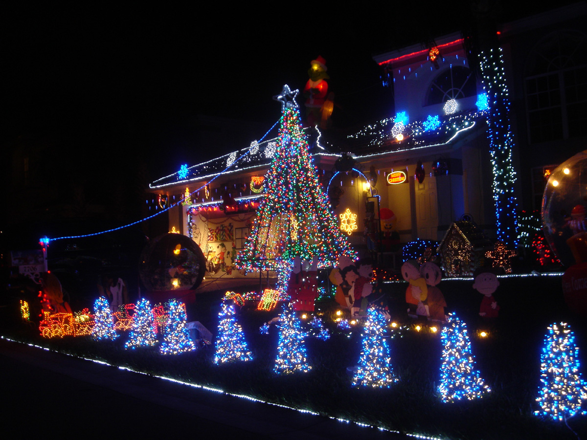 Awesome Christmas lights (24)