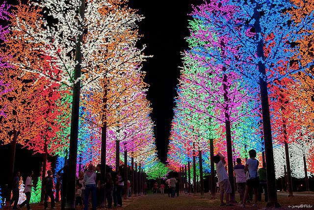 Awesome Christmas Lights (26)