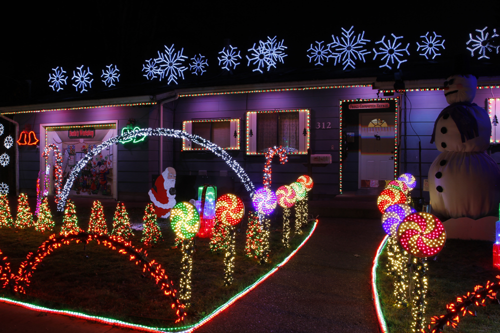Awesome Christmas lights (3)