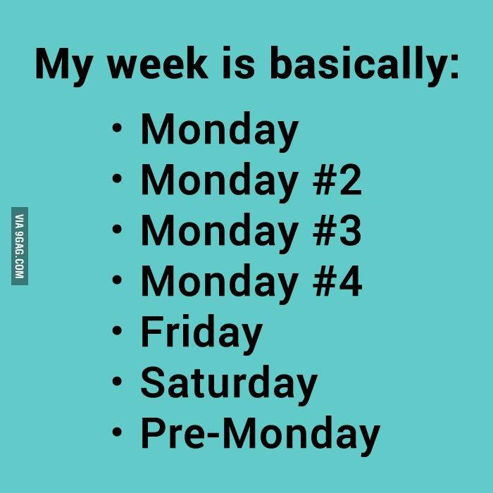 Funny Meme Quotes About Life : Monday over funny quotes quotesgram