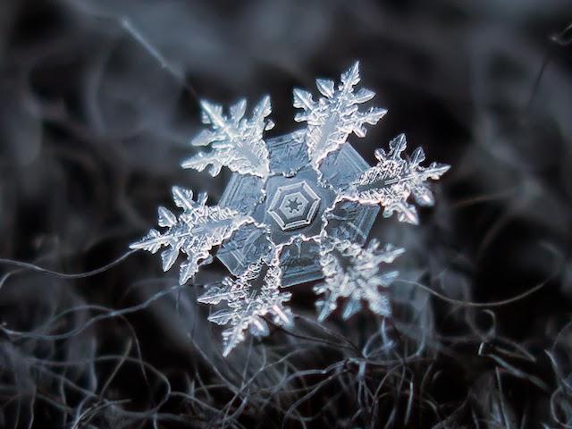 Amazing Photos of Snowflakes Upclose
