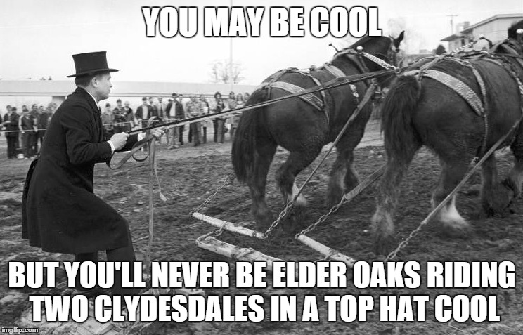 elder oaks riding two clydedales 1976 -1