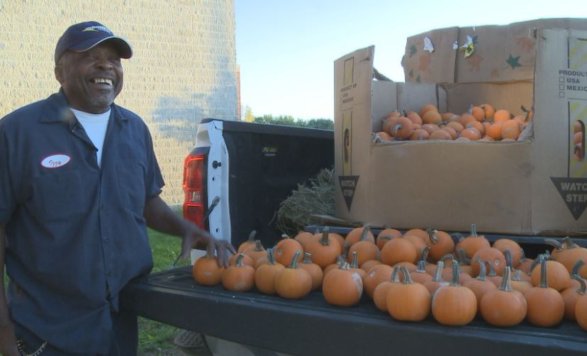 Waterloo man donates hundreds of pumpkins to every student and teacher at school
